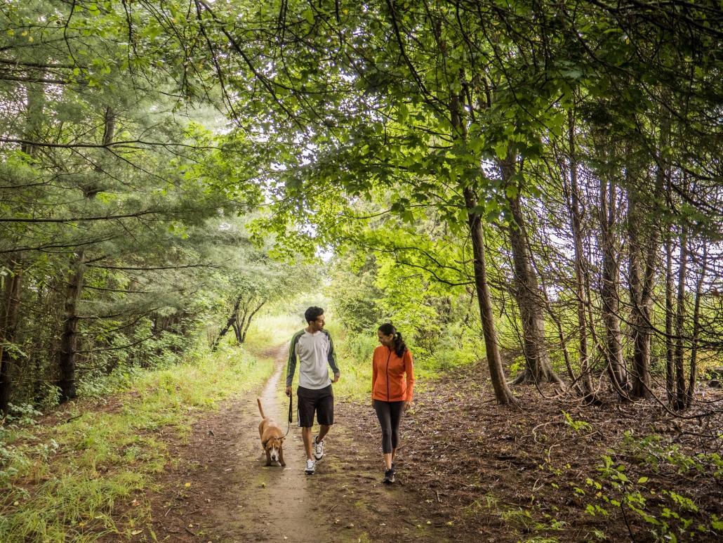 Walk the trail